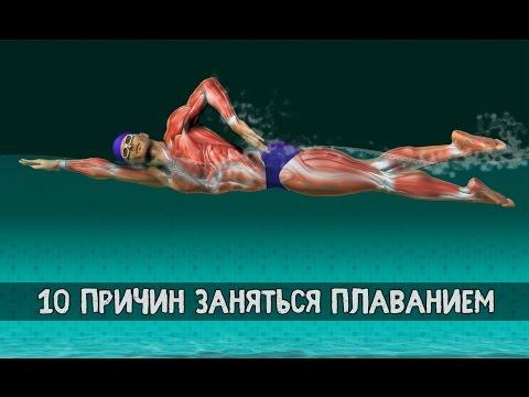 Как часто можно плавать в бассейне