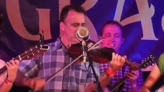 Bluegrass In The Backwoods - Dr Coocachoo Newgrass Band at Kiwigrass, NZ, 2 Feb 2019