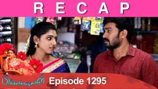 RECAP : Priyamanaval Episode 1295, 17/04/19