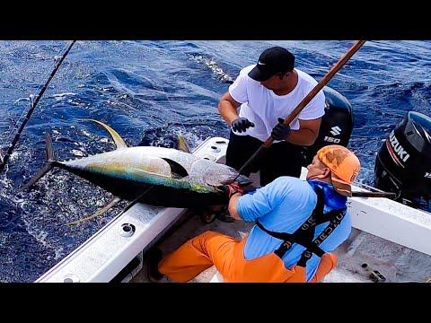 Hawaii Tuna Fishing -  Ahi Fishing - Fishing In Hawaii - Hawaii Fishing