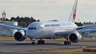 [成田空港] Japan Airlines - JAL - Boeing 787 Dreamliner [JA827J] at Narita Airport