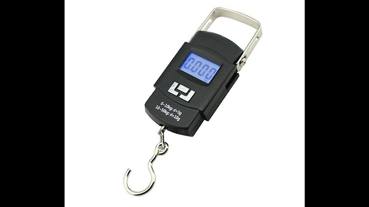 50 Kg Portable Electronic Scale - Product View