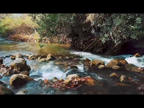 Virtual Tour Of Israel's Nature Reserves And National Parks