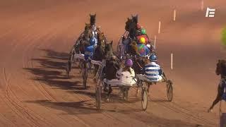 Vidéo de la course PMU PRIX DES GRIVES