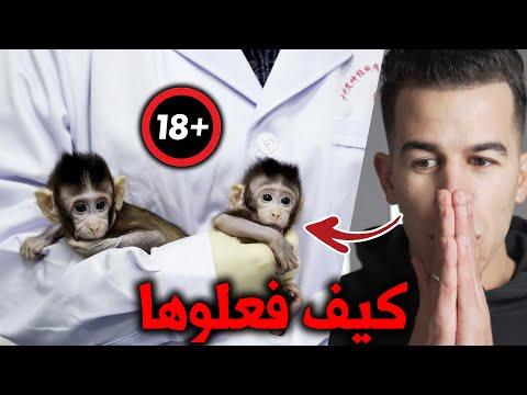 استنساخ البشر أقرب مما نتوقع 😰| ما كنا نخشاه تحقق بالفعل ☠️ !! Human cloning