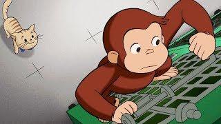 Jorge el Curioso en Español 🐵 Liberen a Hundley 🐵 Episodio Completo 🐵 Caricaturas Para Niños