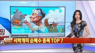 서학개미 순매수 종목 TOP 7 / THE PULSE