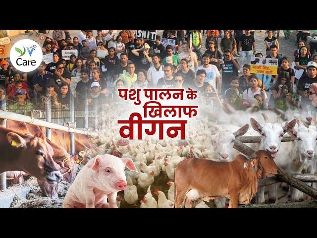 पशु पालन के खिलाफ - वीगन | Vegans Against Animal Rearing