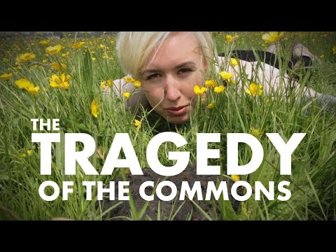 The Tragedy Of The Commons   Shed Science