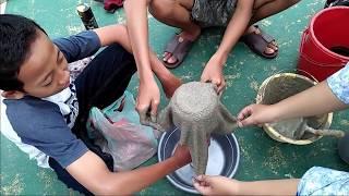 SMAN8BATAM_10IPA4_I'MPOSSIBLE   handuk bisa jadi pot bungaa????