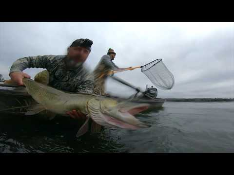 Never Give Up: Fly Fishing For Muskies In Northern Wisconsin