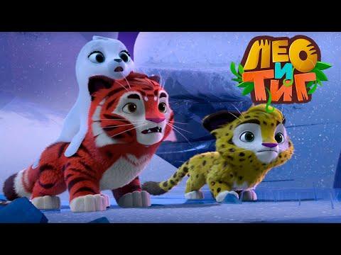 Лео и Тиг — Белый-пребелый — Серия 37