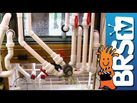 Pumps, Plumbing and Electrical - EP 3: Saltwater Aquarium Basics