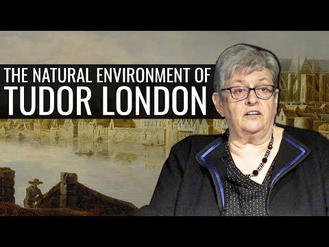 The Natural Environment Of Tudor London