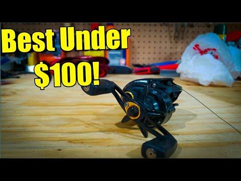 The Best Baitcaster UNDER $100 Dollars!! ( 2020)
