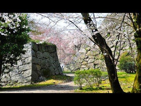 🏯 Castle Ruins Fukuoka City, May 2017 (See Description) 🏯