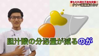 胃もたれ、夏バテにも タナベ胃腸薬ウルソ BY薬王堂TV thumbnail