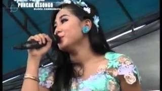 Video Tembang Tresno New pallapa Ayu Arsitha download MP3, 3GP, MP4, WEBM, AVI, FLV Oktober 2017