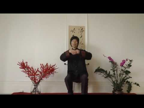 Daoist Internal Alchemy Meditation 2016 Zhixing Wang, The Dao Hua Qigong School (UK)