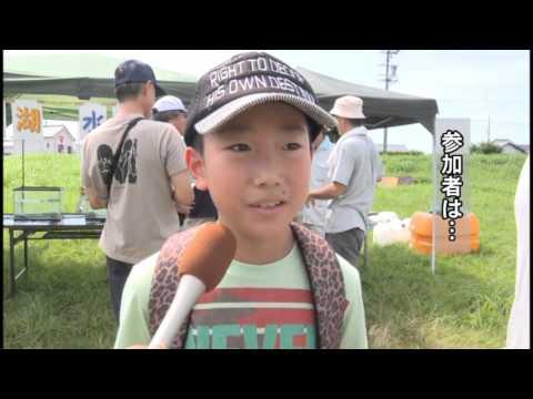 Hamamatsu cable news