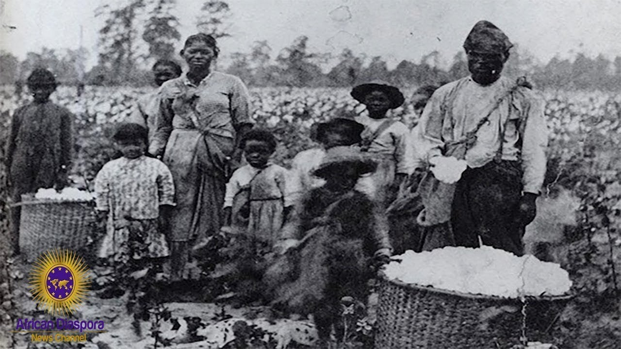 MSM Admits US Government Owes $17.1T In Reparations To Descendants Of African Slaves