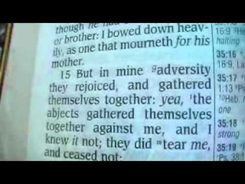 Psalm 35 King James Holy Bible