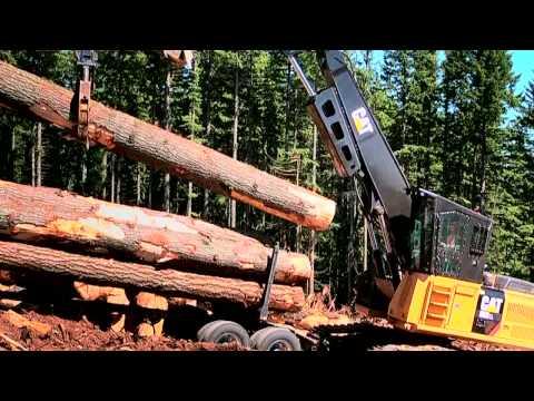 Комплексные решения для лесной промышленности
