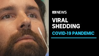 Can you get reinfected with COVID-19 or are is a second positive test 'viral shedding'? | ABC News