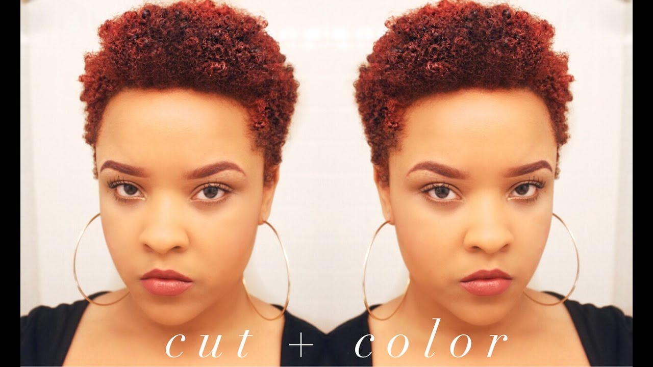 Natural Hair Color Series: Shea Moisture + Big Chop - YouTube