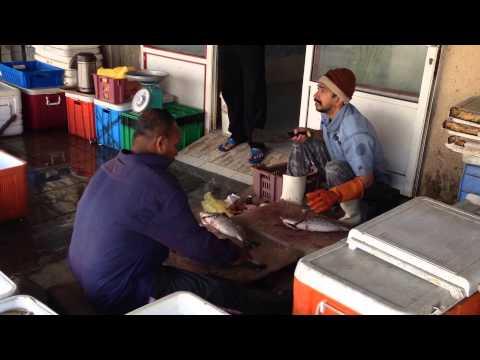 Fish market - misja numer 658