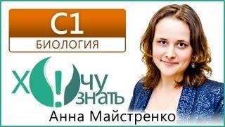 C1-9 по Биологии Подготовка к ЕГЭ 2013 Видеоурок