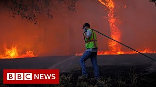 California fires: more than 1.4 million hectares burned - BBC News