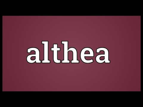 Althea Meaning