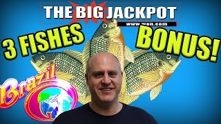 🐟 3 FISHES BRAZIL BONUS ROUNDS 💣 BIG BOOMS INCOMING!