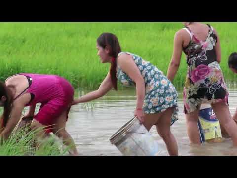 hot Girl Fishing   Amazing Fishing at Battambang   How To Catch Fish By Hand Part  31 streaming vf
