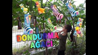 Algida Dondurma Ağacı / Ice Cream Tree / Eğlenceli Çocuk Videosu