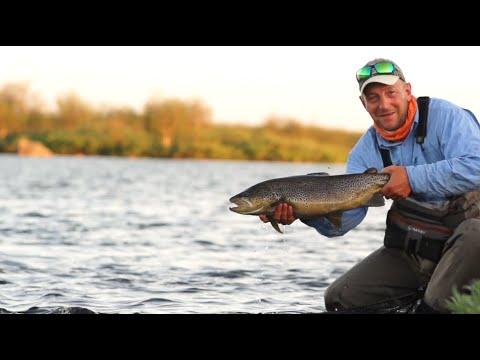 Trout fishing Kola peninsula 2016