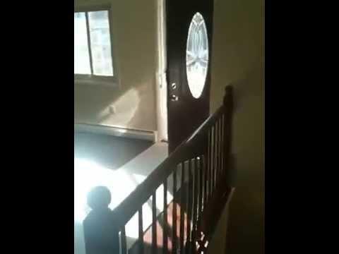 House For Rent Woodbridge Va Youtube