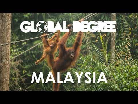 Malaysia - Discovering Millions Of Bats