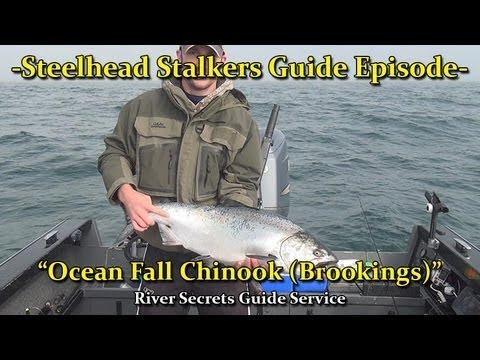 Brookings Ocean Chinook