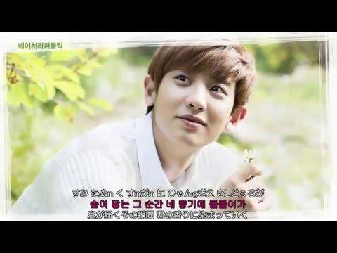 EXO Beautiful ルビ+歌詞+日本語訳