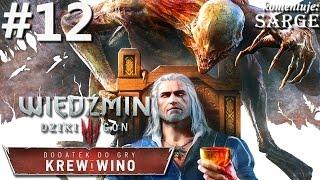 Oto dwunasty odcinek mojej serii Zagrajmy w Wiedźmin 3: Krew i Wino...
