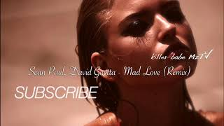 Sean Paul David Guetta Mad Love Konstantin Ozeroff Sky Remix.mp3