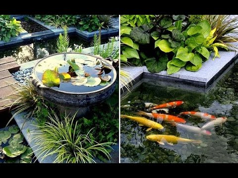 Genial Small Garden Or Backyard Aquarium Ideas Will Blow Your Mind