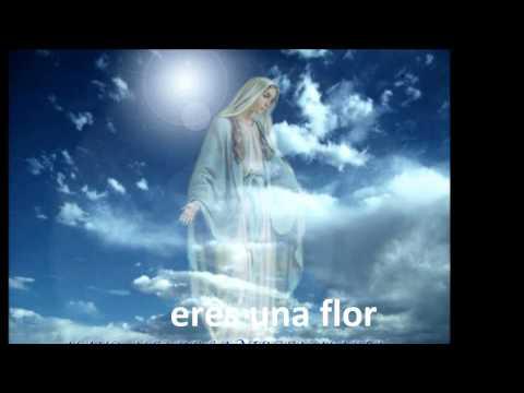 A mi Madre, Virgen Mara Alas al Infinito