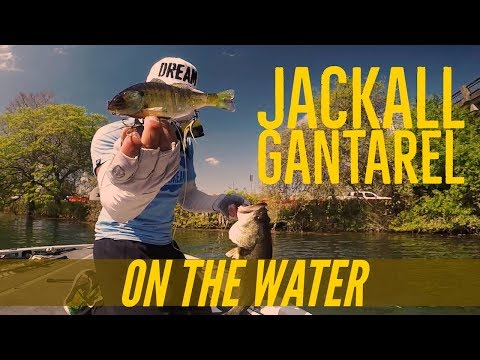 Fishing the Jackall Gantarel Swimbait in Texas - Cast to Catch