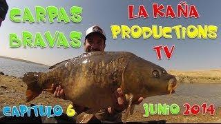 CARPAS BRAVAS CAPITULO 6 TRAILER EN HD