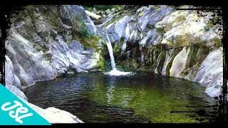 Searching for ROYAL POOL in Angeles National Forest - Hidden Forest Oasis