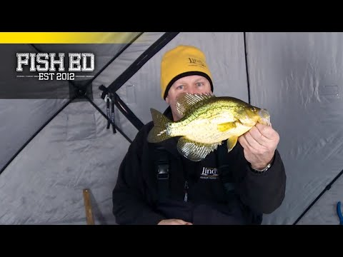 Fish Ed | Snow Covered Crappies