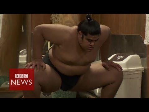 Life of a sumo wrestler - BBC News
